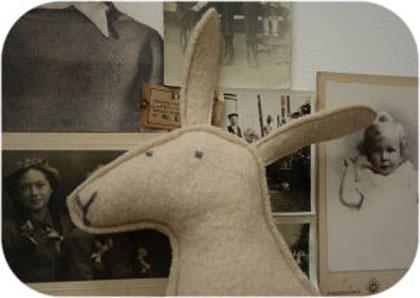 RabbitSoftieCloseUp420w