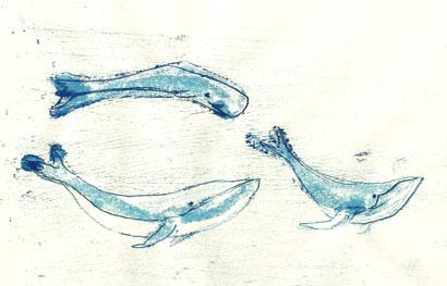 Whales410w
