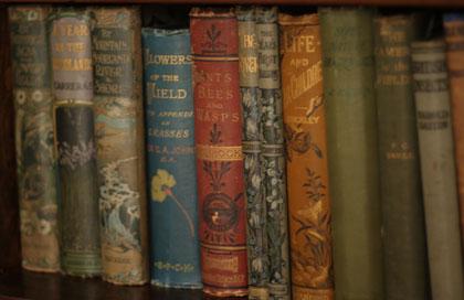 Books420w