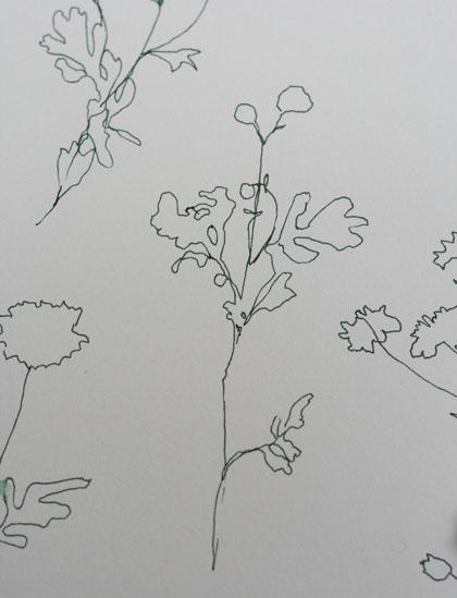 Drawing420w