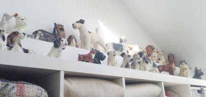 Dogs420w