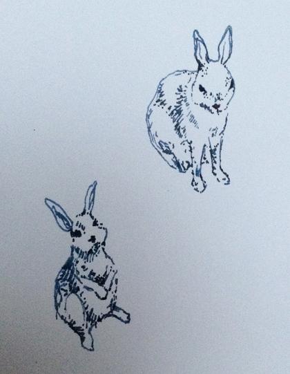 Bunnies420w