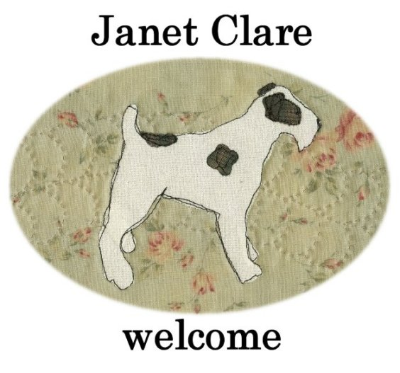 Janet Clare - Welcome